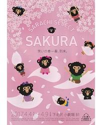 sarachi-select-sakura-omote-hp